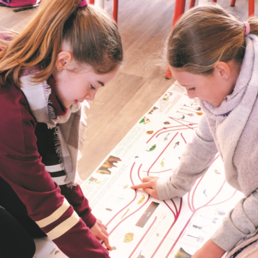 Activité Montessori : réaliser une frise chronologique