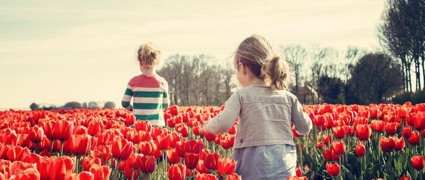 Activité : développer les sens de votre enfant