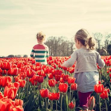 iActivité : développer les sens de votre enfant
