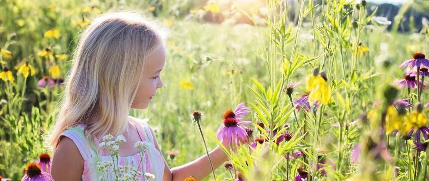 Se reconnecter par les bienfaits de la nature