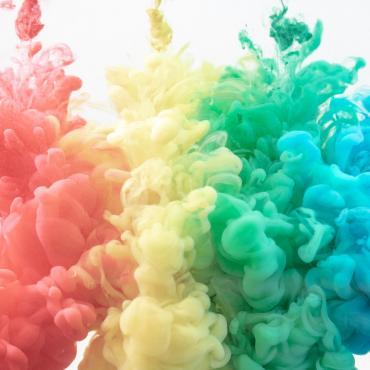 Activité : une vie en couleur