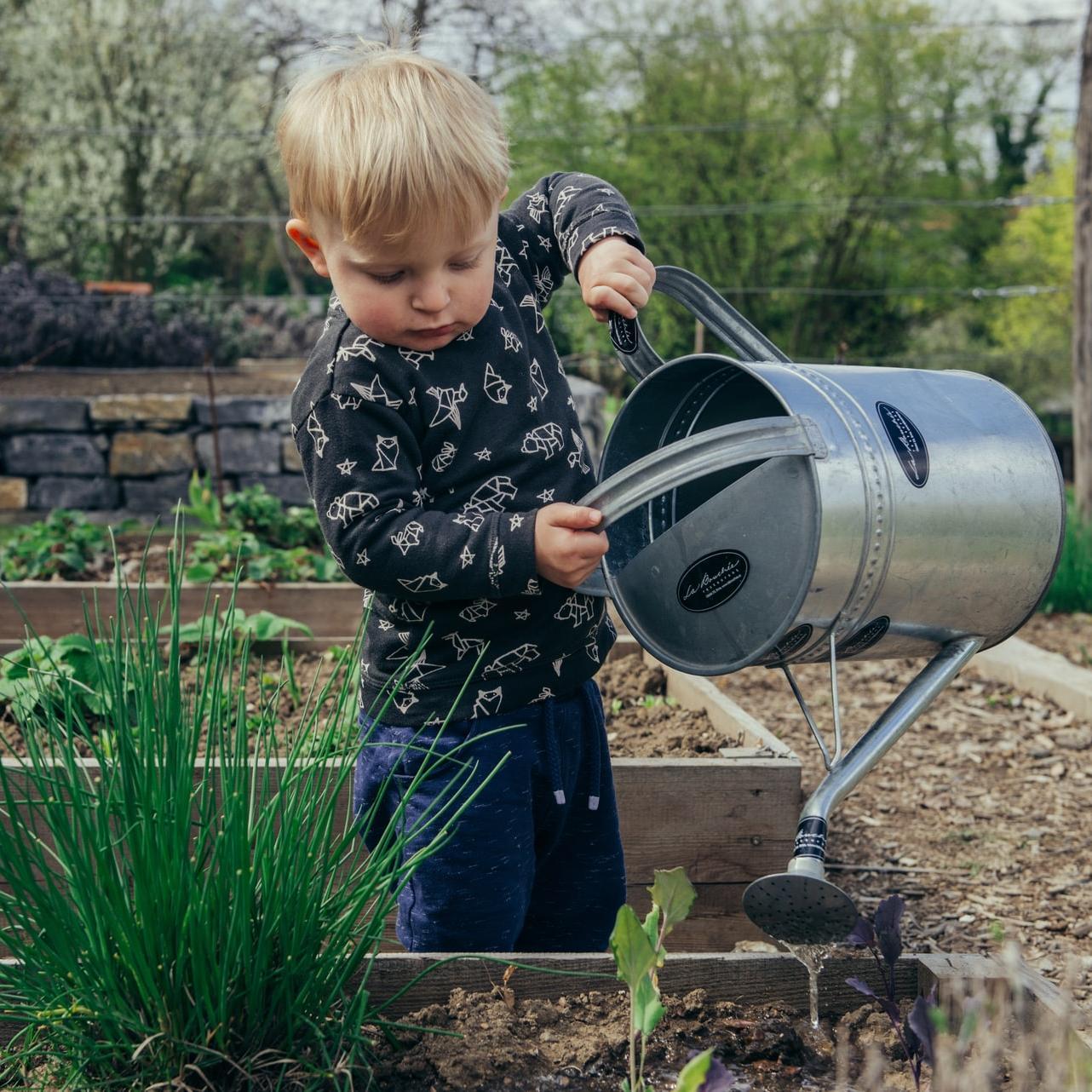 Autonomie : les bienfaits du jardinage